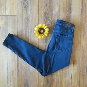 Lucky Brand Bridgette High Rise Skinny Jeans 10/30